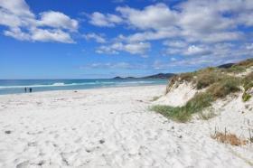 tasmanien9-1575