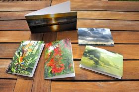 fotokunstkarten sw florida