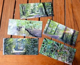 fotokunstkarten bohl-iggeheim 1
