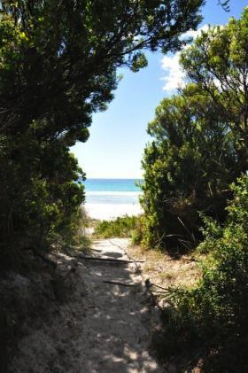 tasmanien4-1575
